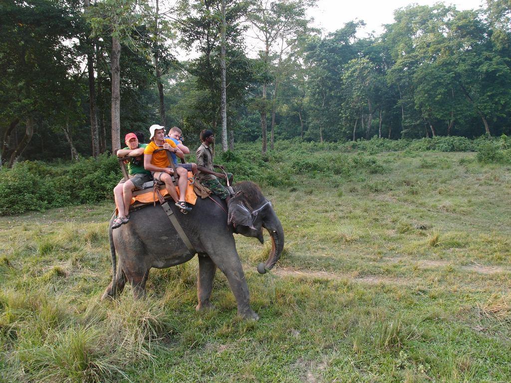 Nepalas - Chitwan nacionaliniame parke