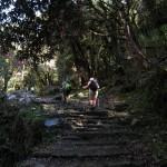 Kelionė į Nepalą - pakeliui į Poon Hill
