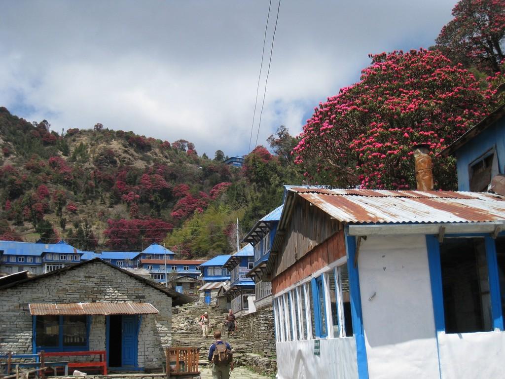 Kelionė į Nepalą - atėjus į Ghorepani kaimelį