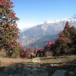 Kelionė į Nepalą - pakeliui