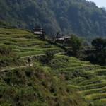 Kelionė į Nepalą - keliaujant kalnuose
