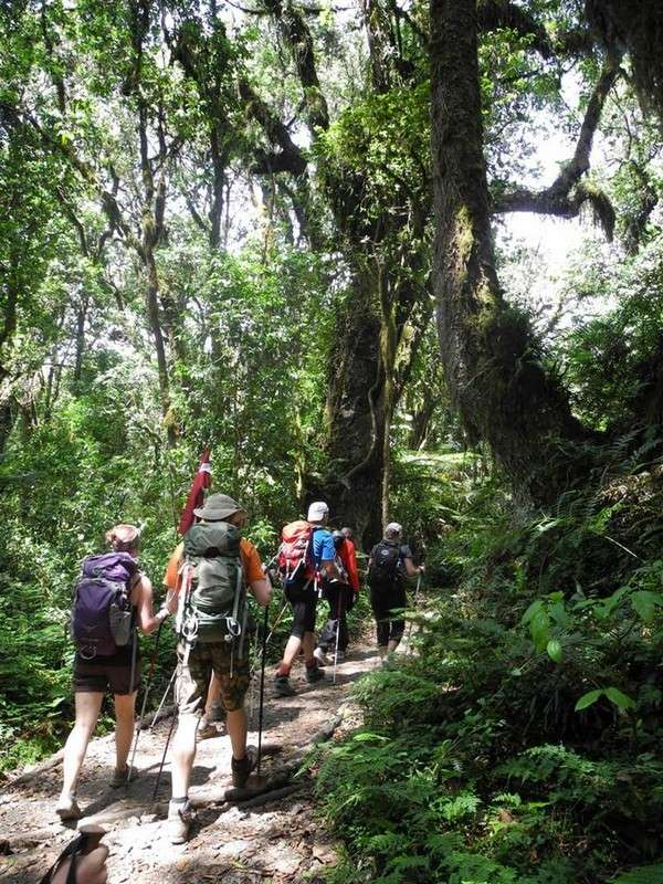 Kilimandžaras - kopimo pradžia