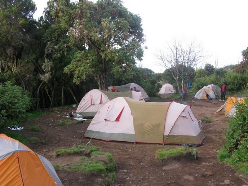 Kilimandžaras - viena iš stovyklų