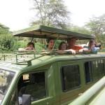 Kilimandžaras - safaris