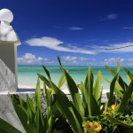 Kelionė į Afriką - Zanzibaras